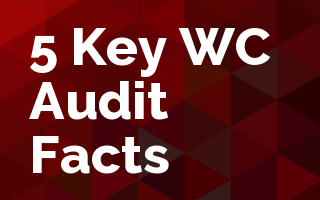 5 Key Work Comp Audit Facts