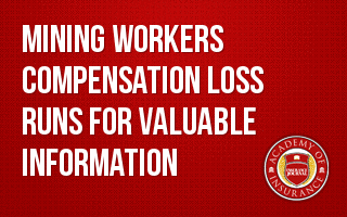 Mining Workers Compensation Loss Runs for Valuable Information