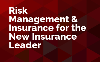 Risk Management and Insurance for the New Insurance Leader