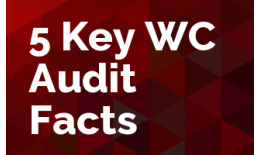 5 Key Work Comp Audit Facts
