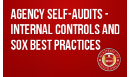Agency Self-Audits - Internal Controls and SOX Best Practices