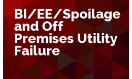 BI/EE/Spoilage and Off Premises Utility Failure