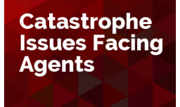 Catastrophe Issues Facing Agencies