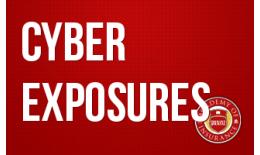 Cyber Exposures