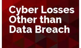 Cyber Losses Other than Data Breach