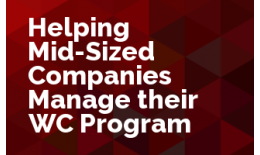 Helping Mid-Sized Companies Manage their WC Program