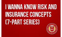 I Wanna Know Risk and Insurance Concepts (7-part series)