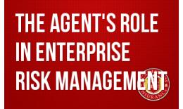 The Agent's Role in Enterprise Risk Management