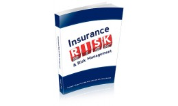 Insurance Risk and Risk Management