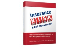 Insurance Risk and Risk Management Book