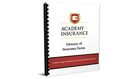 Insurance Terms and Definitions Book