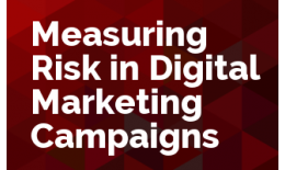 Measuring Risk in Digital Marketing Campaigns