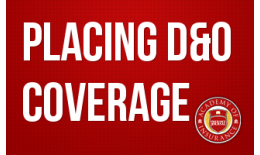 Placing D&O Coverage: Today's Critical Considerations for Every Broker