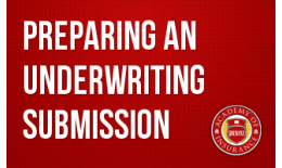 Preparing an Underwriting Submission