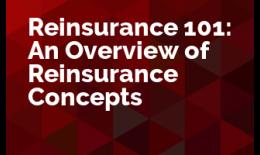 Reinsurance 101: An Overview of Reinsurance Concepts