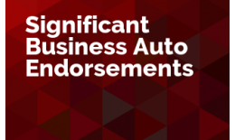 Significant Business Auto Endorsements