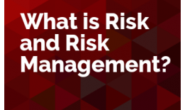 What is Risk and Risk Management
