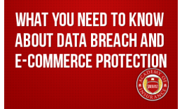 What You Need to Know about Data Breach and E-Commerce Protection