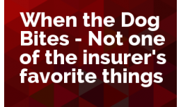 When the Dog Bites - Not one of the insurer's favorite things