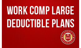 Work Comp Large Deductible Plans