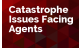 Catastrophe Issues Facing Agencies
