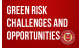 Green Risk- Challenges and Opportunities Facing Insurers