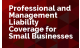 Professional and Management Liability Coverage for Small Business