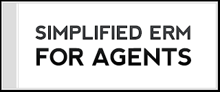 agent role in risk management